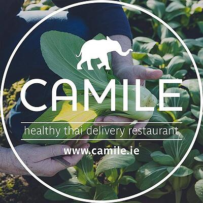 camile-ireland-logo-background